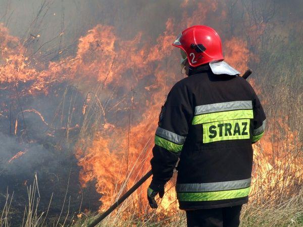 Strażacy podkreślają, że pierwszy raz spotkali się z tak wielkim pożarem.